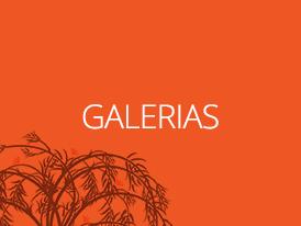 bt_galerias